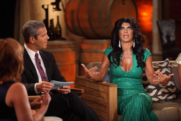 Teresa Real Housewives of New Jersey