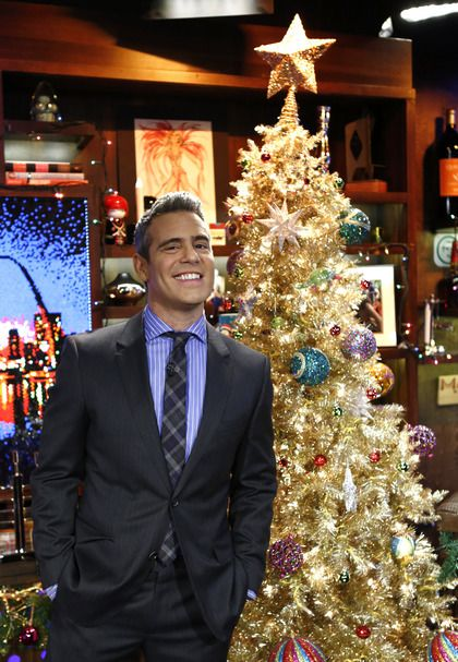 Andy WWHL Christmas