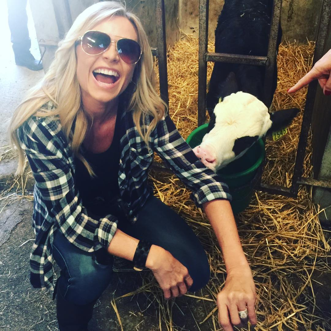 tamra-judge-milking-a-cow